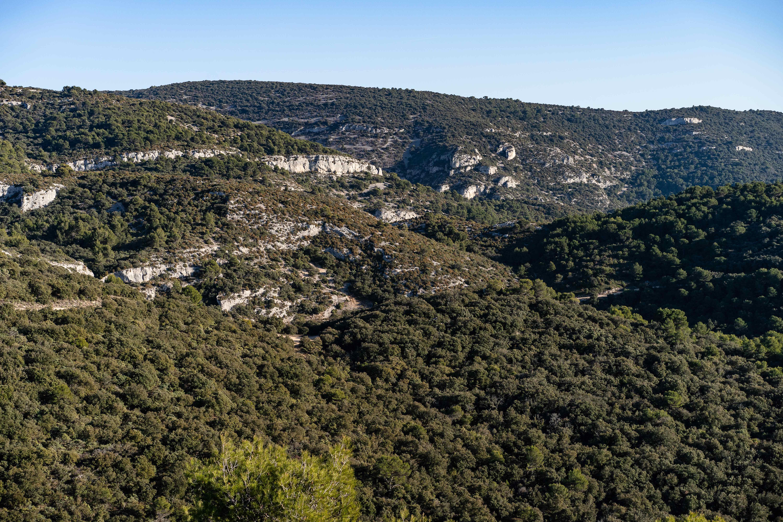 Trail des Monts de Vaucluse Saumane